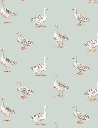geese duckegg CLOSE
